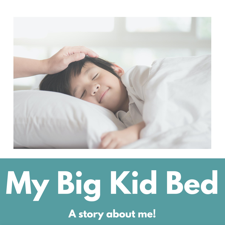 my big kid bed book